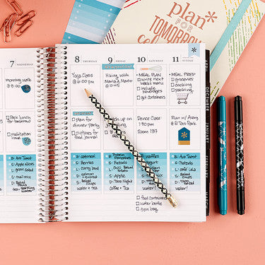 lifeplanner from erin condren