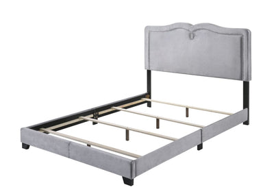 Velvet Upholstered Wooden Queen Size Bed with Nail head Trims, Gray - BM204566 By Casagear Home