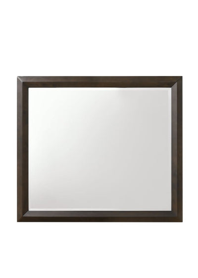 Transition Style Wooden Mirror with Rectangular Shape Brown and Silver - BM205578 By Casagear Home BM205578