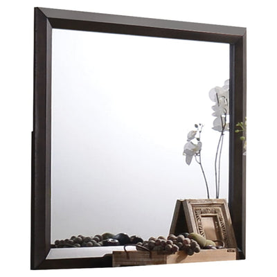 Transition Style Wooden Mirror with Rectangular Shape,Brown and Silver - BM205578 By Casagear Home