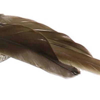 Feather Sitting Bird Accent Decor Set of 3 Light Brown By Casagear Home BM229844