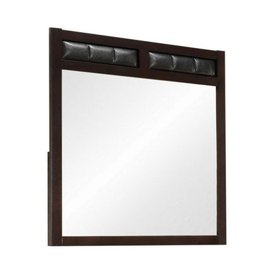 Rectangular Wooden Frame Mirror with Leatherette Panels, Brown By Casagear Home