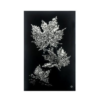 Rectangular Floral Wall Art with LED, Black and Silver By Casagear Home
