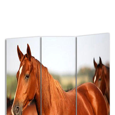 3 Panel Foldable Wooden Screen with Horse Print Brown - BM26507 By Casagear Home BM26507