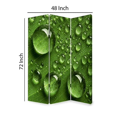 Morning Dew Print Foldable Canvas Screen with 3 Panels Green - BM26532 By Casagear Home BM26532