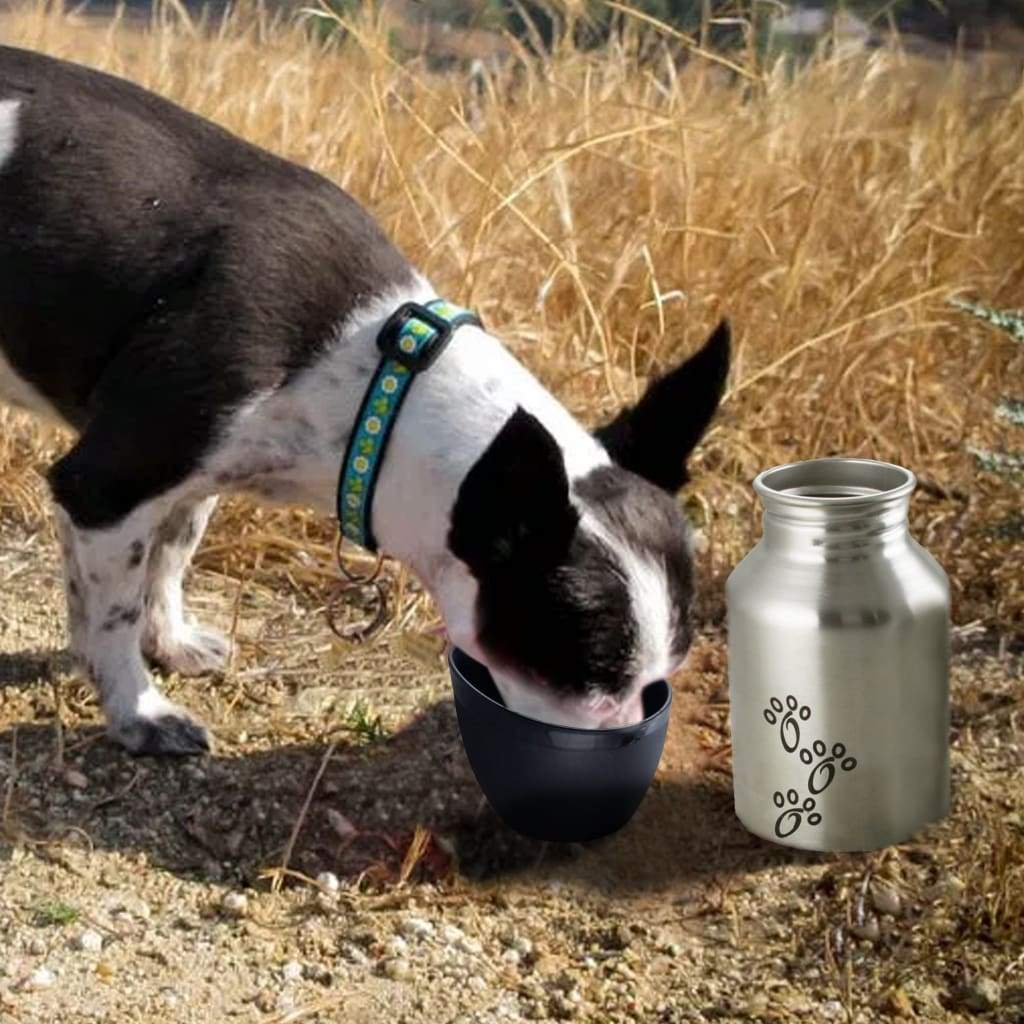Plastic Fin Cap Pet Travel Water Bottle in Stainless Steel, Small, Silver and Black