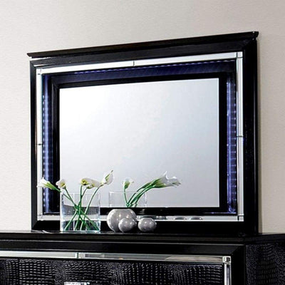 Bellaova Contemporary Style Mirror, Black By Casagear Home