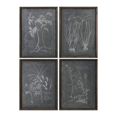 Root Study Print Art Set of 4 By Uttermost