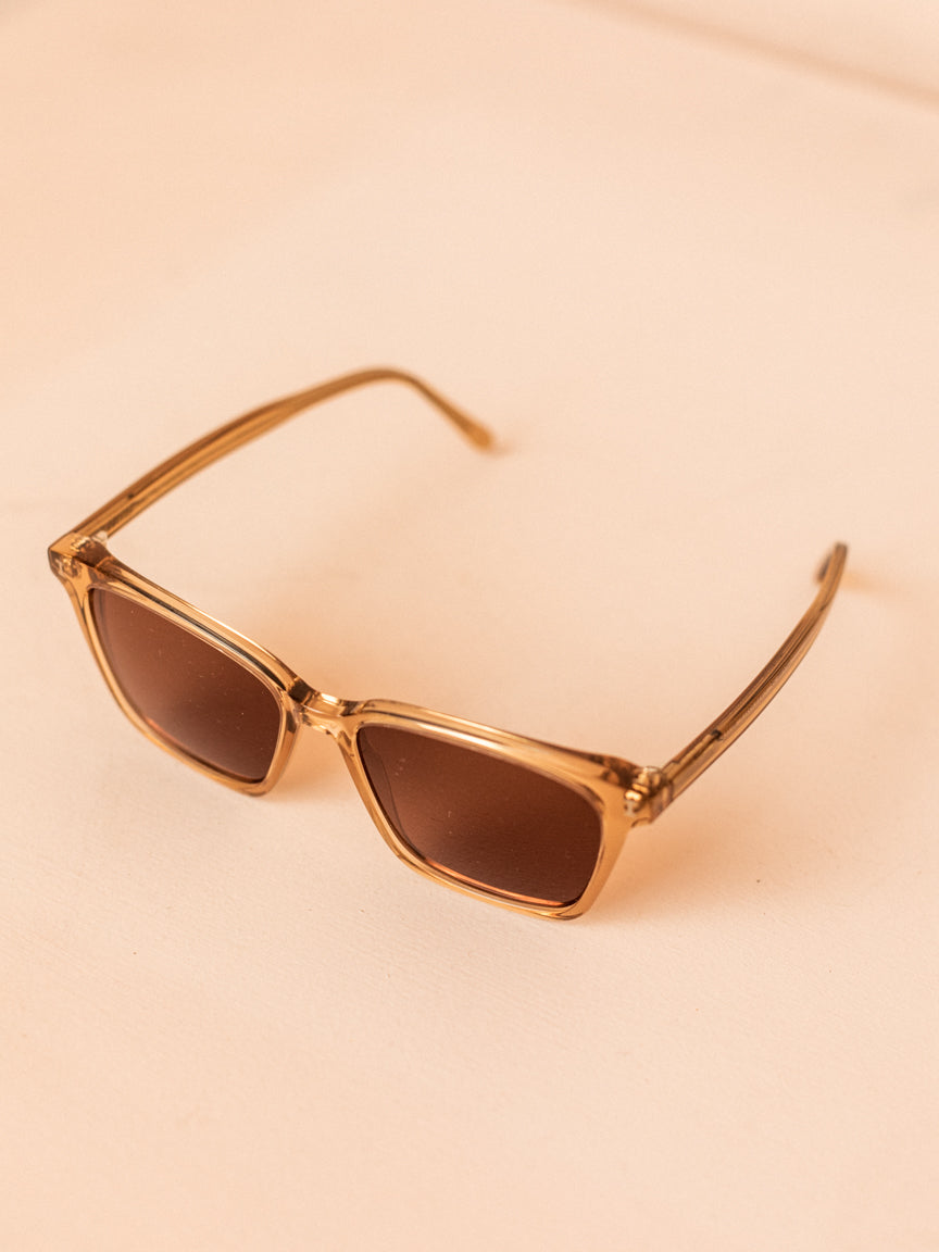 Asheville in Brown with Brown Lenses