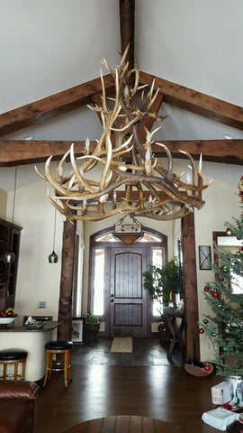 """Kingston Peak"" XL Elk Antler Chandelier - Rocky Mountain Antler Works"
