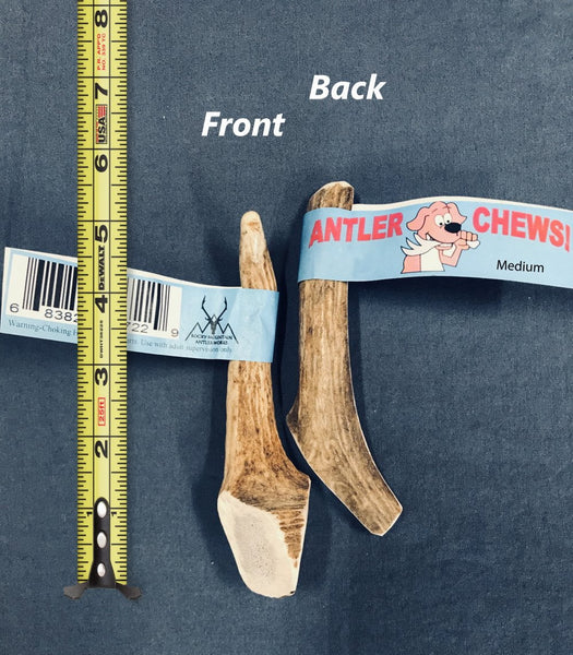 Antler Chew Single, Medium - FREE SHIPPING! - RMAW