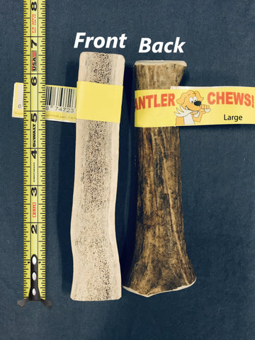 Antler Chew Single, Large - FREE SHIPPING! - RMAW