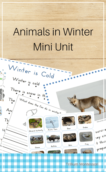 Animals in Winter- Mini Unit - Trillium Montessori