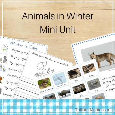 Animals in Winter- Mini Unit