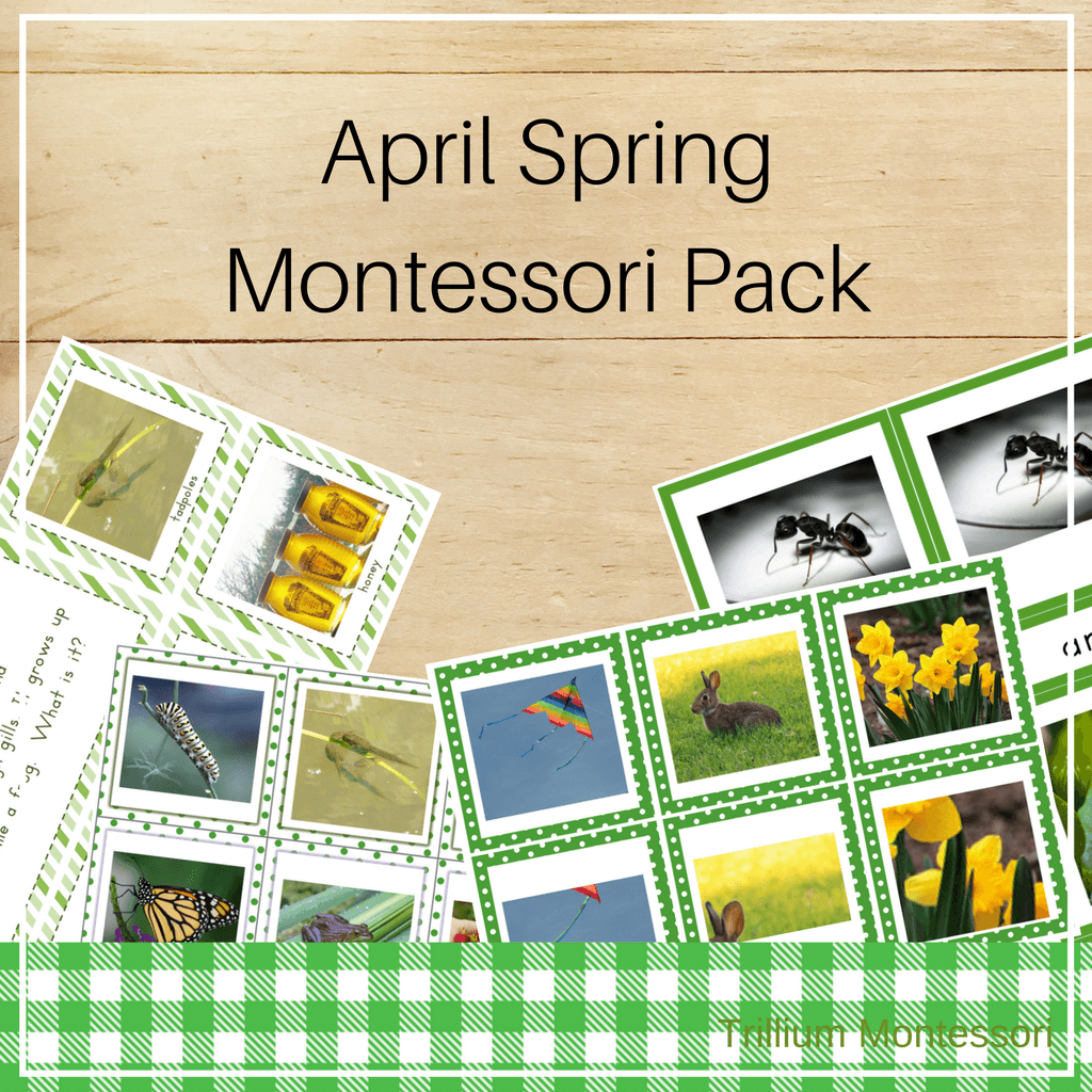 Montessori Style Activities for April and Spring - Trillium Montessori