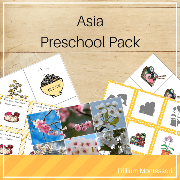 Bundle 2: Continents Preschool Packs - Trillium Montessori