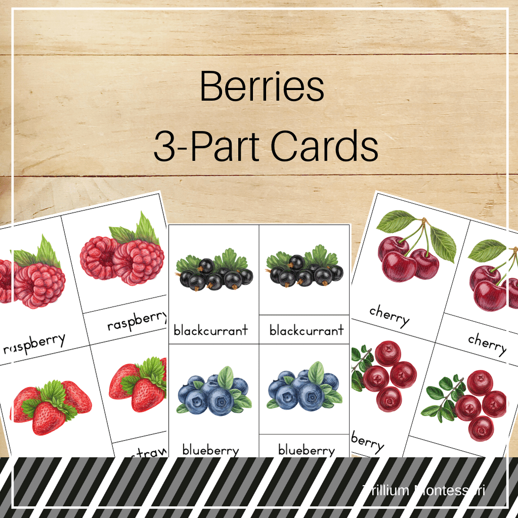 Berries 3-Part Cards - Trillium Montessori