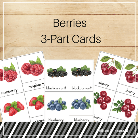 Berries 3-Part Cards