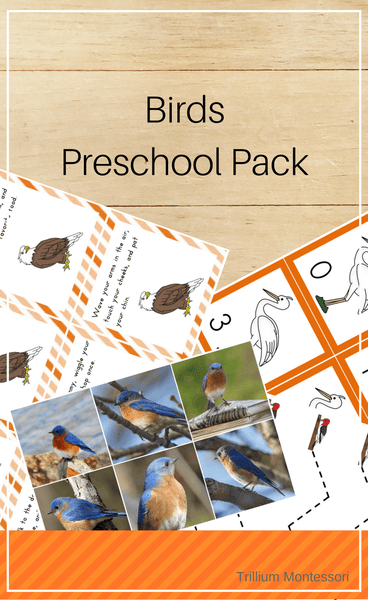 Birds Preschool Pack - Trillium Montessori