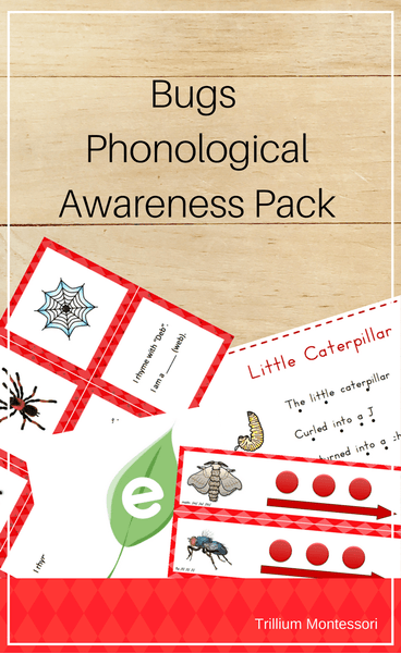 Bugs Phonological Awareness Pack