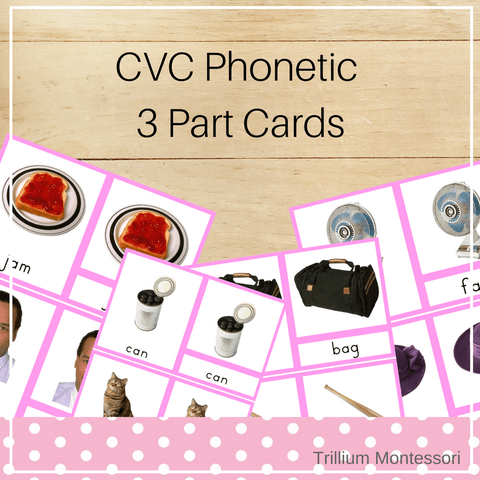 CVC Phonetic 3 Part Cards - Trillium Montessori