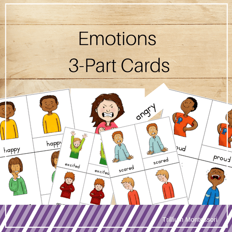 Emotions 3-Part Cards - Trillium Montessori