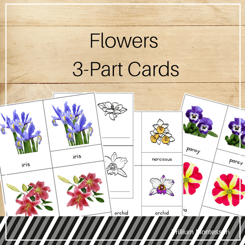 Flowers 3-Part Cards - Trillium Montessori