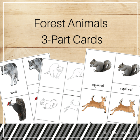 Forest Animals 3-Part Cards - Trillium Montessori