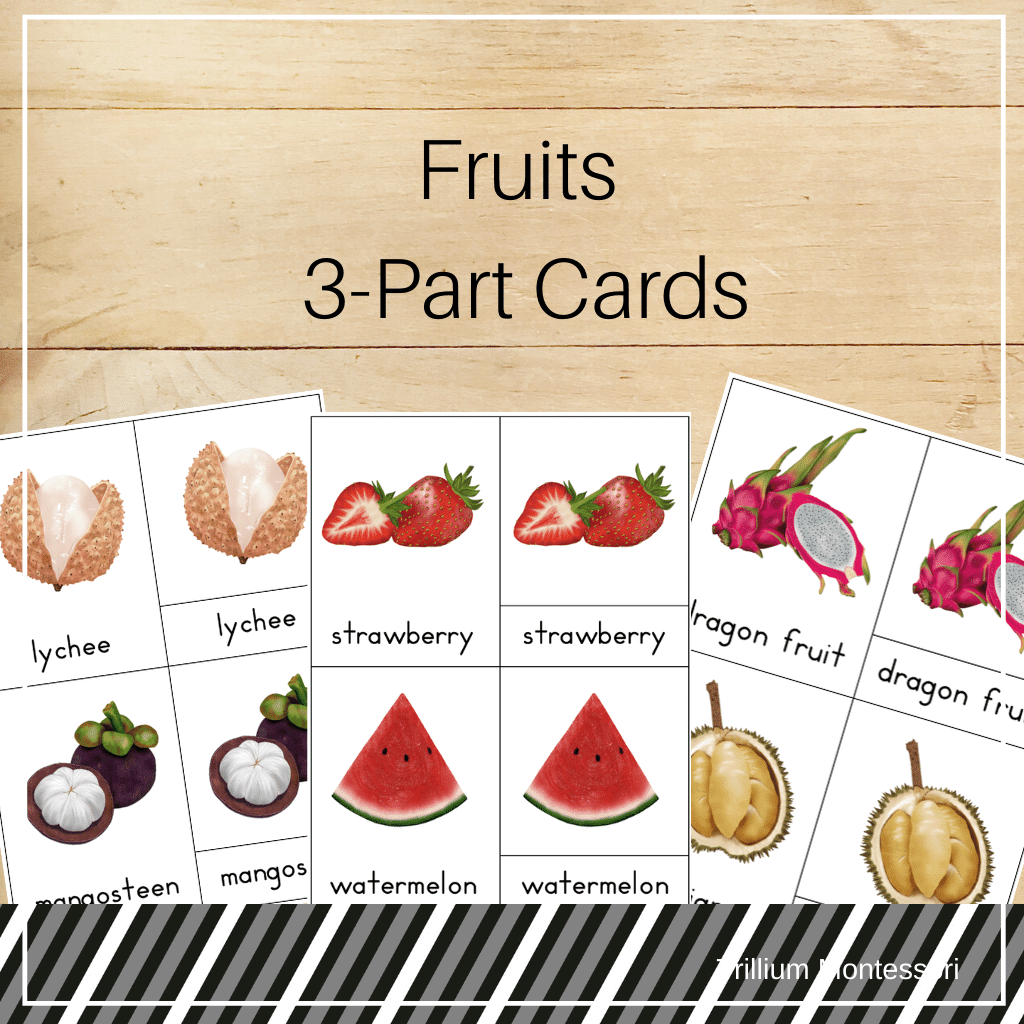 Fruits 3-Part Cards - Trillium Montessori