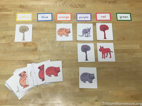 Australia and Oceania Preschool Pack - Trillium Montessori