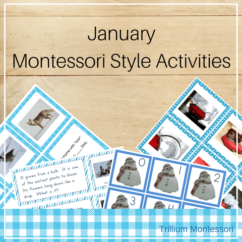 Montessori Style Activities for January - Trillium Montessori
