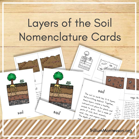 Layers of the Soil Nomenclature Cards