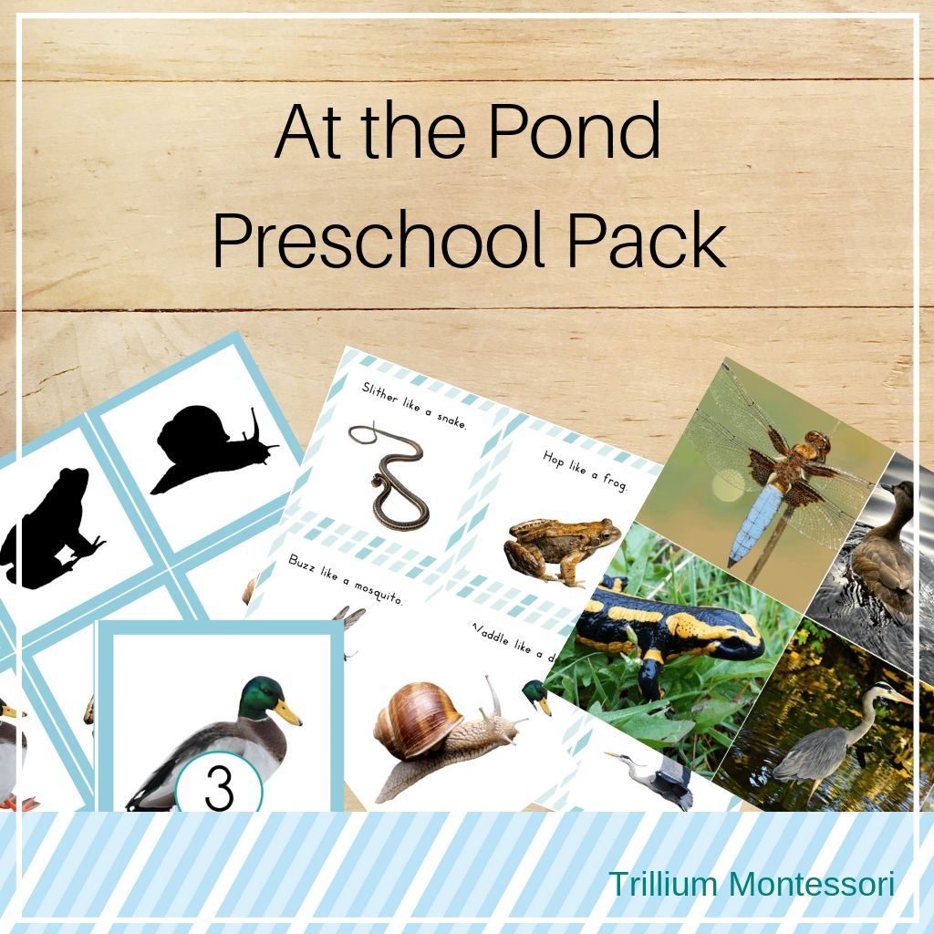 Ponds Preschool Pack - Trillium Montessori