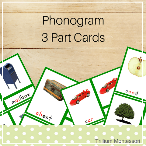 Phonogram 3 Part Cards - Trillium Montessori