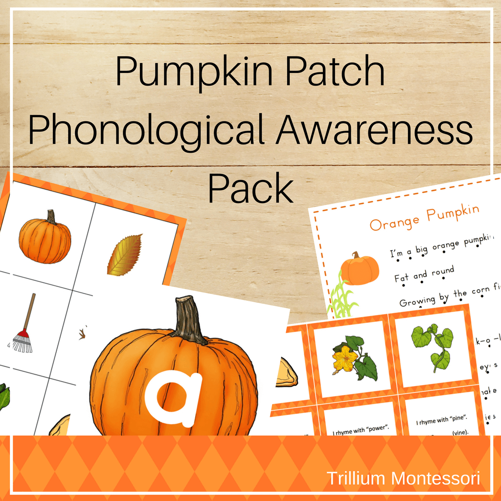 Pumpkin Patch Phonological Awareness Pack - Trillium Montessori