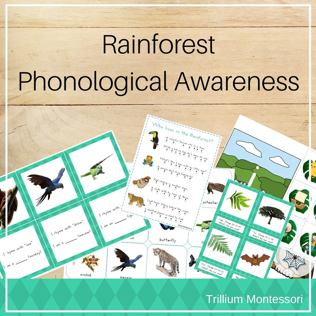 Rainforest Phonological Awareness Pack - Trillium Montessori