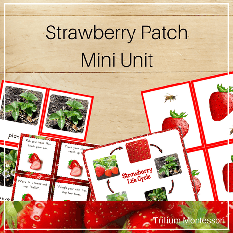 Strawberry Patch Mini Unit