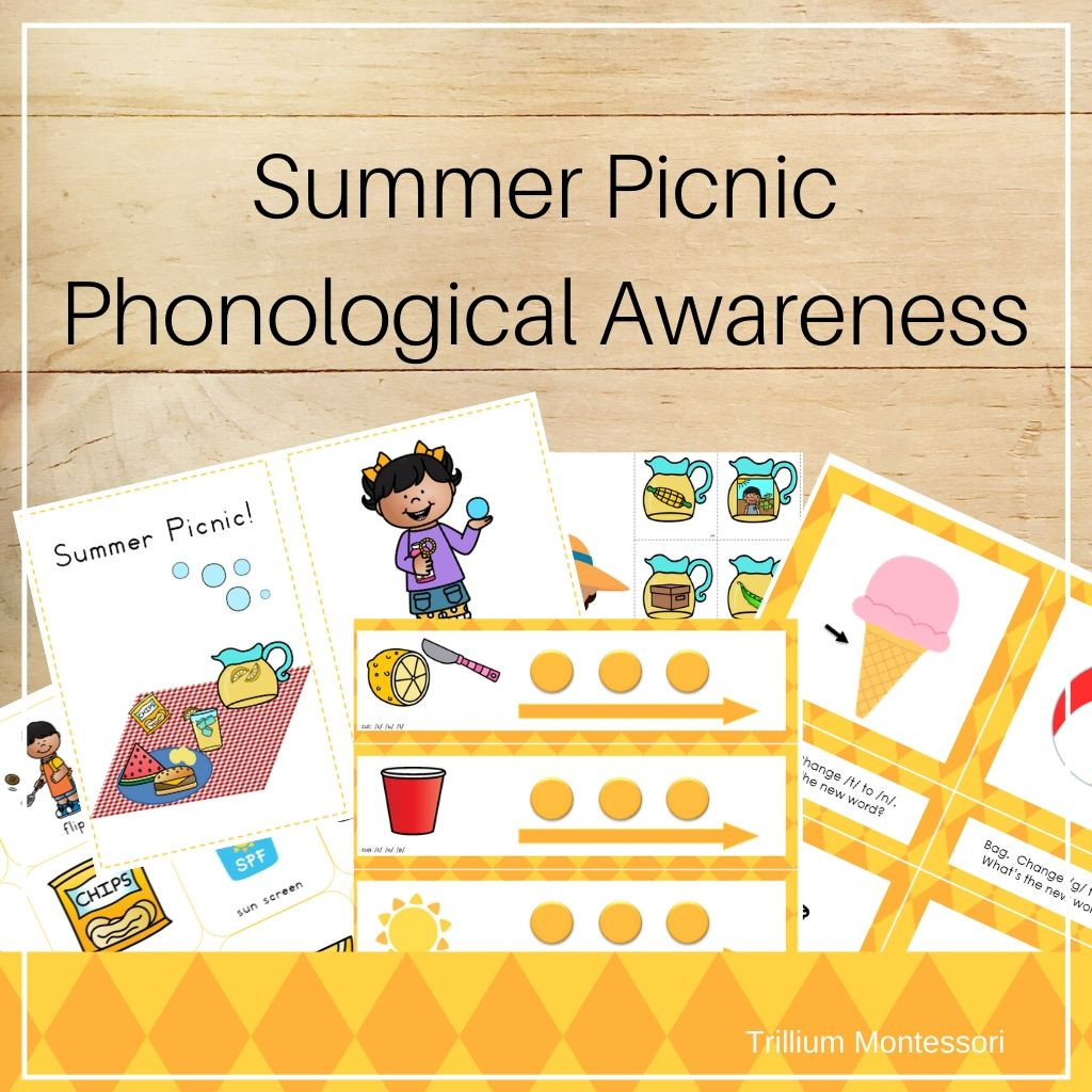 Summer Picnic Phonological Awareness Pack