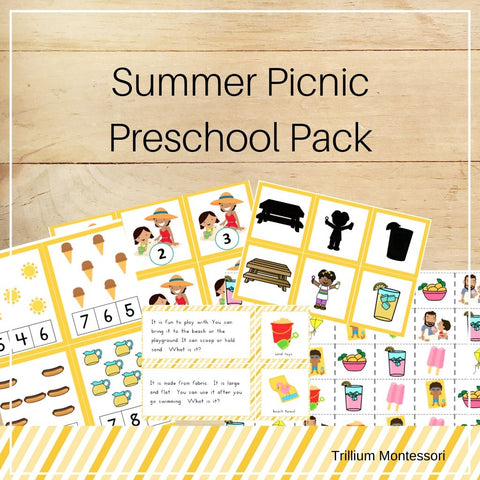 Summer Picnic Preschool Pack