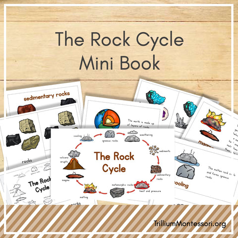 The Rock Cycle Mini Book