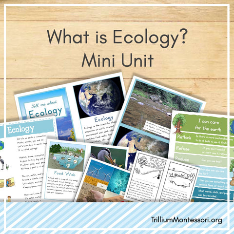 Ecology Mini Unit
