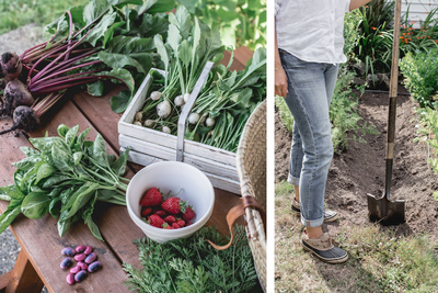 5 Tips to Preserve Your Summer Bounty