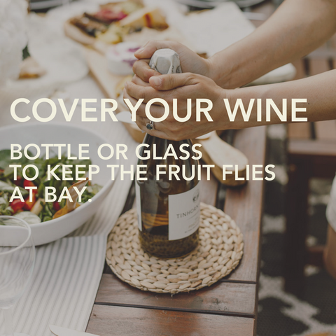 Two hands covering an open bottle of white wine on a table with a small Abeego beeswax food wrap