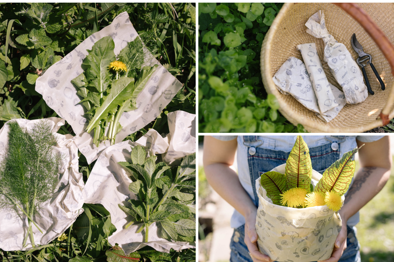 Keep foraged greens alive in Abeego beeswax wraps that breathe