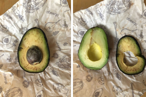 avocado being unwrapped form Abeego - still green and delicious