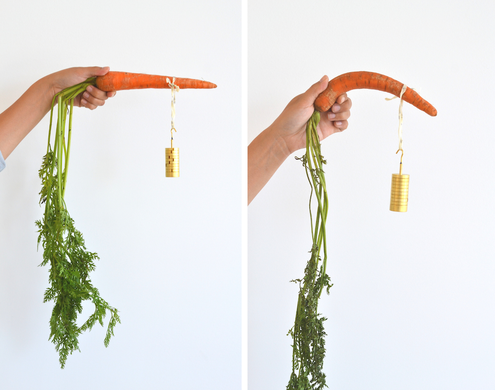 carrot wrapped in Abeego versus carrot left naked