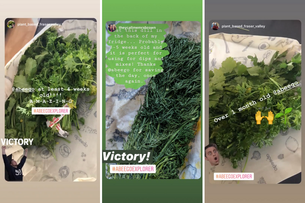 customer photos of greens kept fresh in Abeego