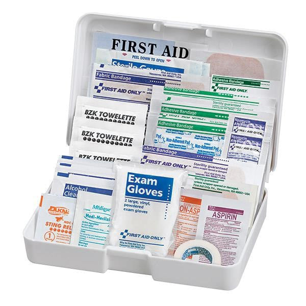 41-Piece Auto First Aid Kit (Plastic Case)