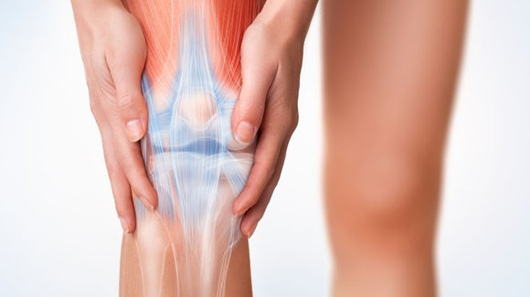 The Guide to Meniscus Tears