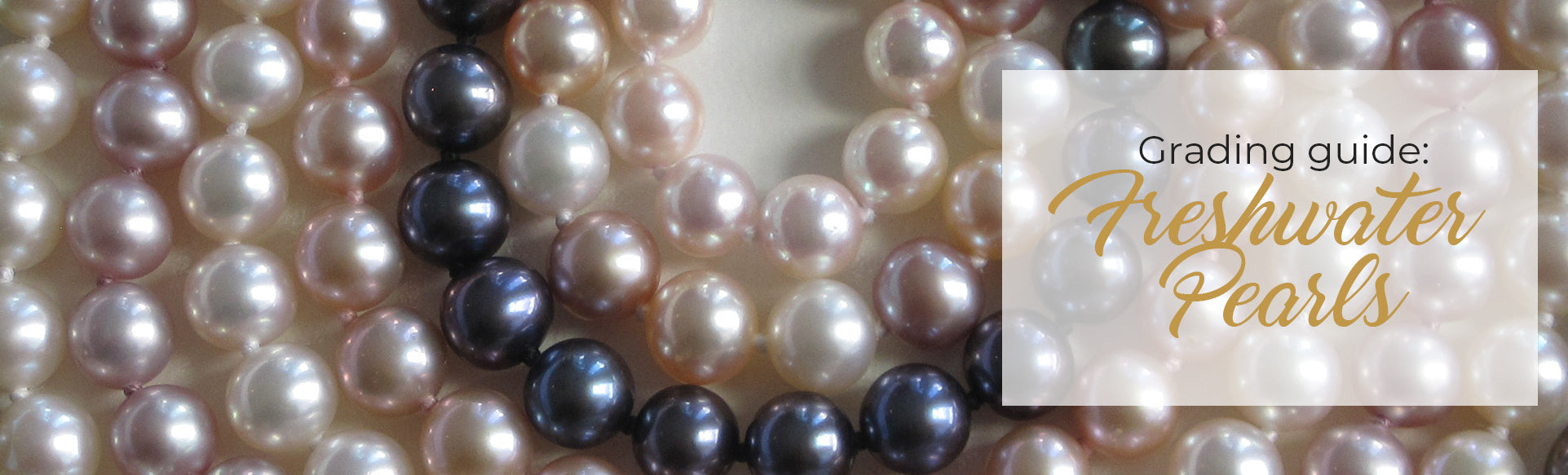 freshwater pearl grading guide